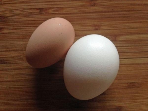egg-comparison