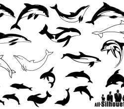 Swimming Dolphins Silhouettes Vector Image Free