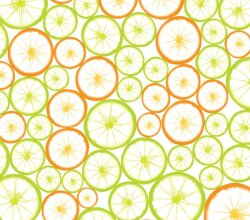Vector Orange Slice Background