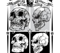 Free Skulls Vector Pack