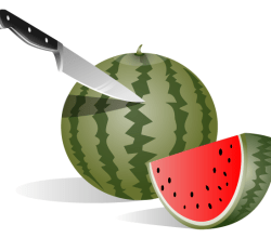 Watermelon Vector Free