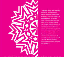 Ornament on Pink Background with Text