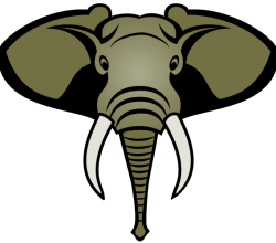 Vector Elephant Head