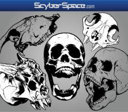 Skull Vector Pack