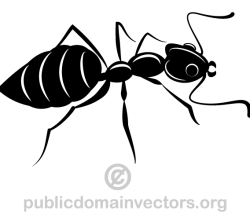 Ants Silhouette Vector Image