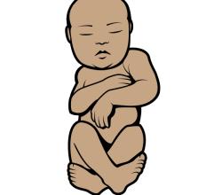 Baby Vector Clip Art