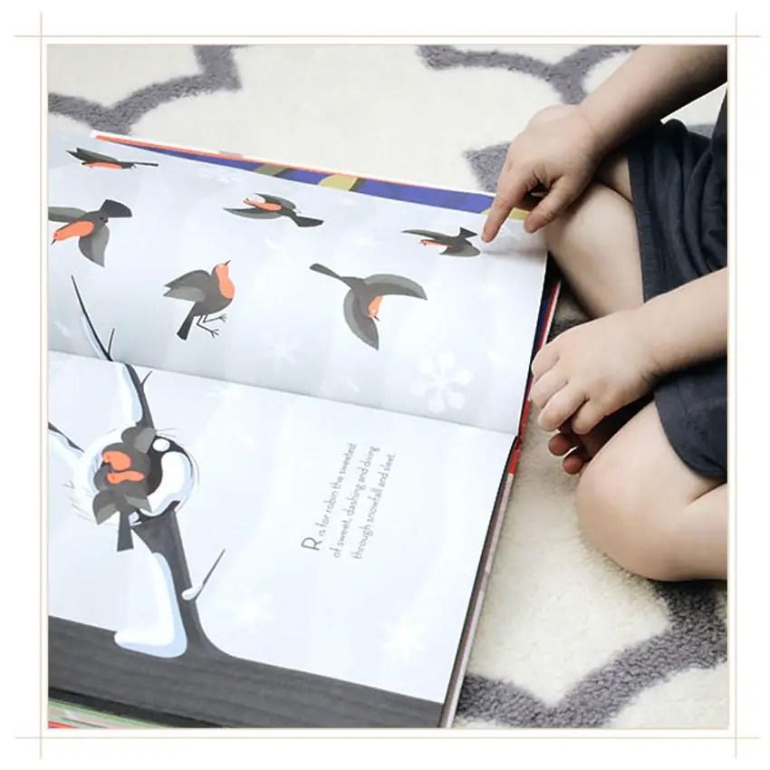 beautiful-birds-book