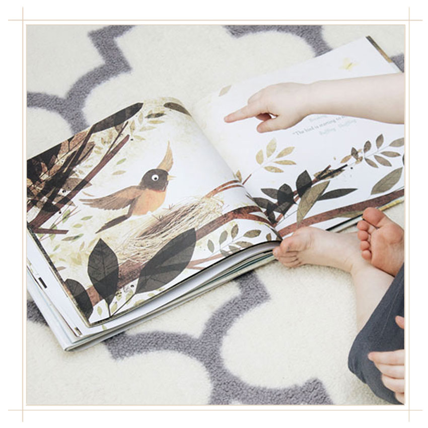 have-you-heard-the-nesting-bird-book