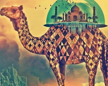 Camel and Middle East Architecture