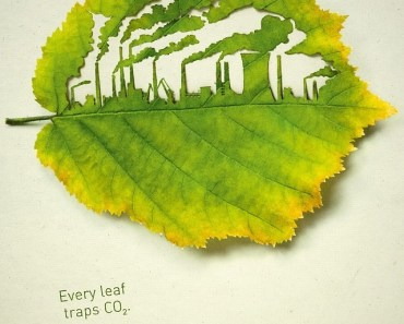 Creative ECO Concept Green Leaf