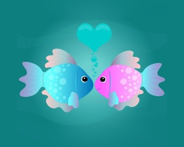Cartoon Kissing Fishes