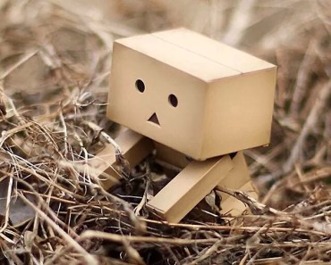Danbo The Box Man