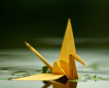 Origami Crane On The Water