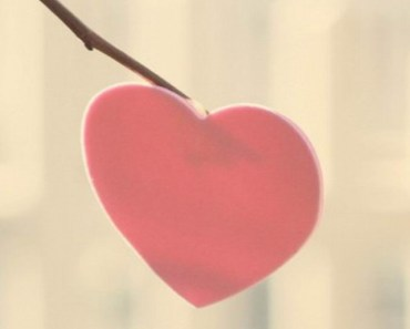 Pink Heart On The Tree