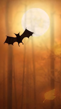 Halloween Bat Illustration