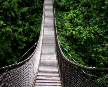 Wood Suspension Bridge