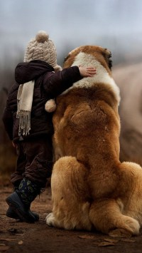 Child And Dog Friendship