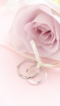 Pink Rose with Rings