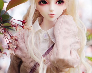 Beautiful SD Doll