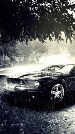 Ford Mustang In The Rain