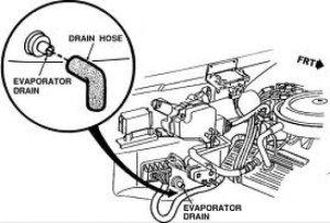 Drain Tube Ford Taurus  FreeAutoMechanic Advice
