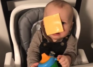 Viral Challenge Has Parents Throwing Cheese Slices At Babies