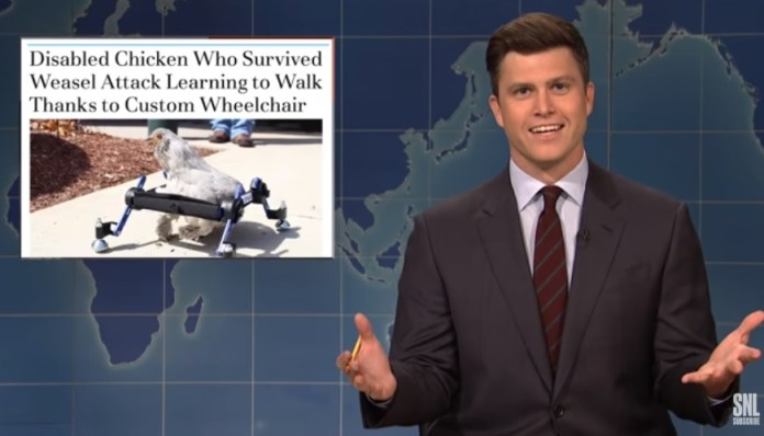 Vermont Girl Not Happy With 'Saturday Night Live' Joke About Her Disabled Chicken