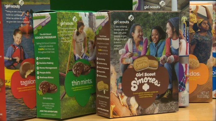 Oregon Man Fakes Home Invasion And Injury To Cover Up $740 Theft From Girl Scouts