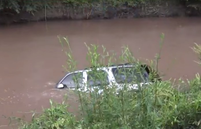 Driver Jumps From Car To Avoid Bug, Car Ends Up In A Bayou