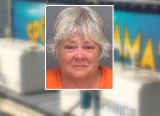 Old Lady Kicked Off Dolphin Boat Cruise For Groping People