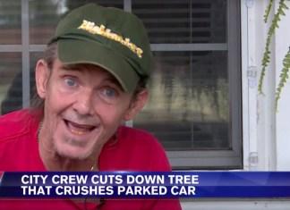 Eyewitness Has Funniest Response To Tree Falling On Girl's Car