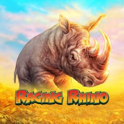 Raging Rhino high variance slot