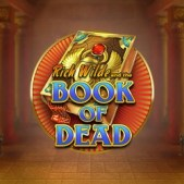 book of dead high roller slot