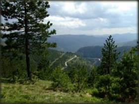 Pogled ka Mokroj Gori
