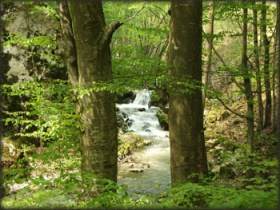 Radovanska reka