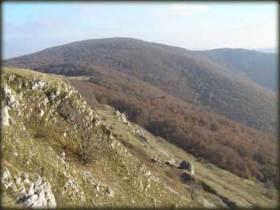 Velika Tresta sa vrha Straže