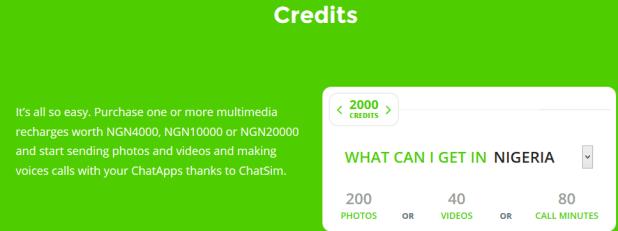 chatsim credits