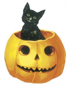 cat in jack-o-lantern illustration