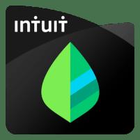 mint logo for non profits