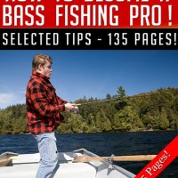 How To Become A Bass Fishing Pro
