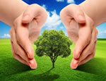 Environmental Concepts And Ideas pictures
