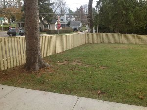Fence 107