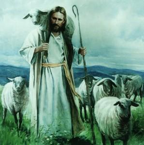 ......good shepherd (2)