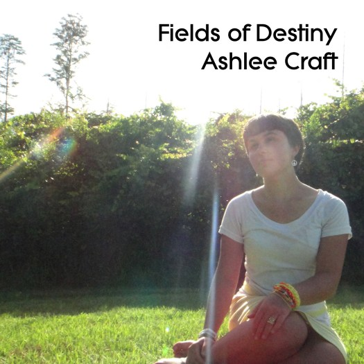 Fields of Destiny - 2016 Cover