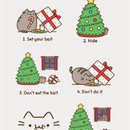 14-12-catch-santa-cat