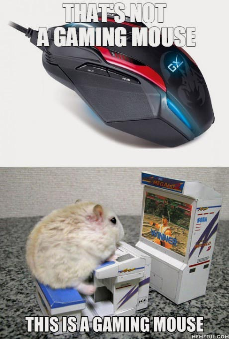 14-12-gaming-mouse-fact