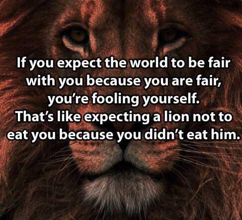 15-12-expect-lion-eat-you-fairness