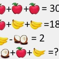 16-02-brain-teaserfruit-algebra-apple-banana