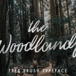The Woodlands – Free Brush Script Font