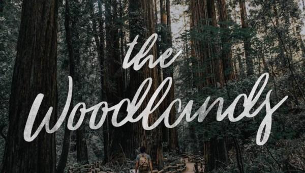 The Woodlands – Free Brush Script Font